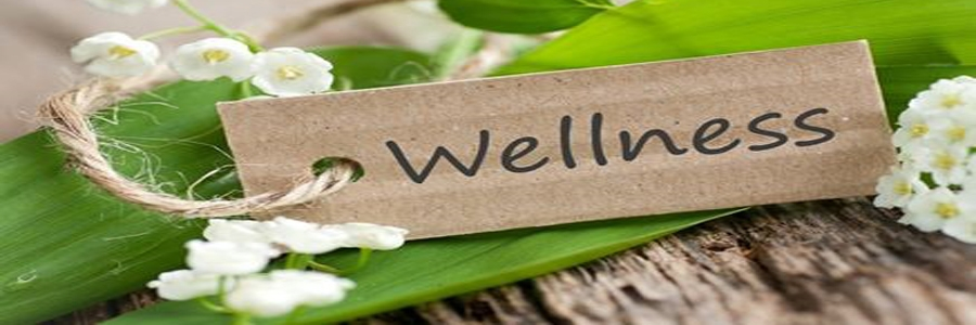 Wellness & Trends