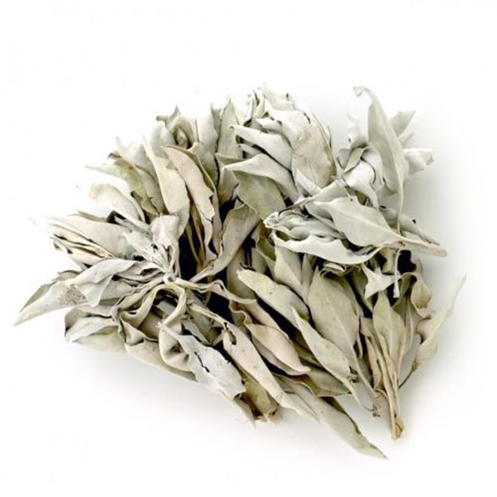White Sage Leaf Clusters High Grade