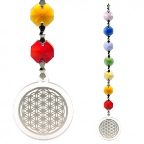 Chakra Feng Shui Flower of Life Silver Healing Charged