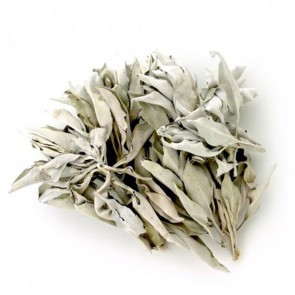 White Sage Leaf Clusters High Grade