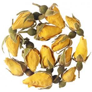 Yellow Rose Buds